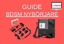 BDSM Nybörjare Guide
