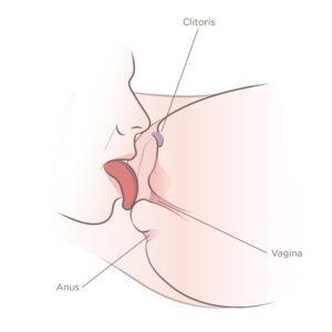 slicka klitoris till orgasm