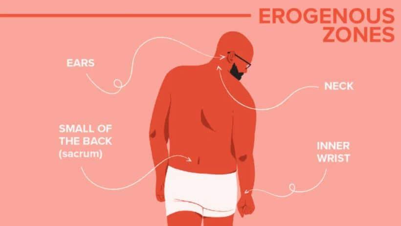 erogena zoner