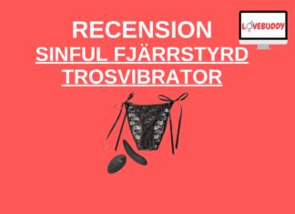 Sinful Uppladdningsbar Fjärrstyrd trosvibrator